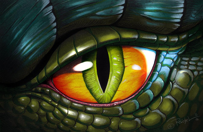 iguana eye painting - photo #38