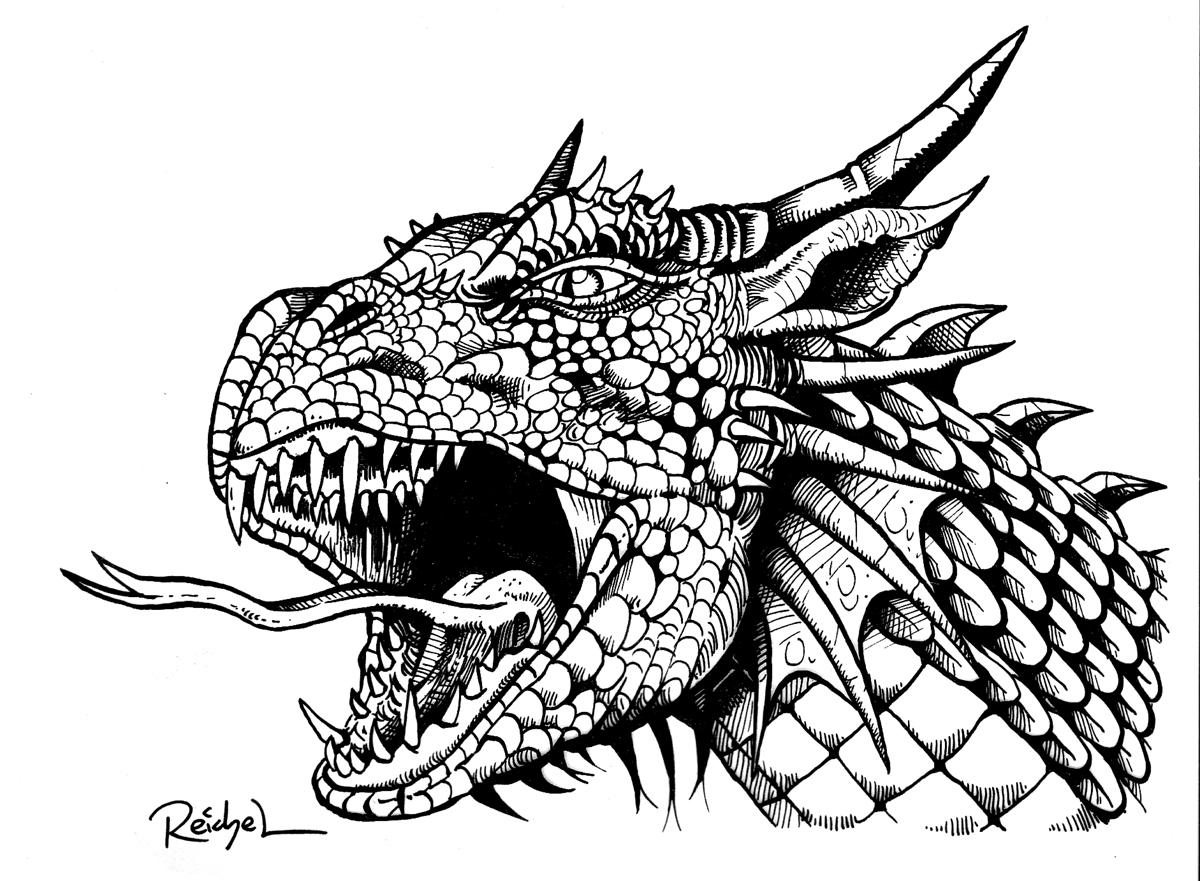 Ausmalbilder Für Erwachsene Zum Ausdrucken Drachen : Niedlich Drachenbilder Zum Ausmalen Und Drucken Ideen Malvorlagen